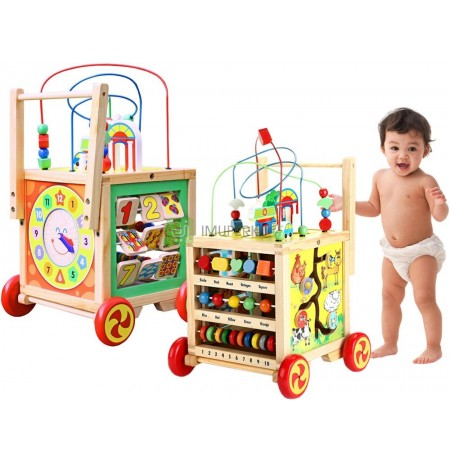 WOODEN Walker PUSH 6in1 EDUCATIONAL CUBE